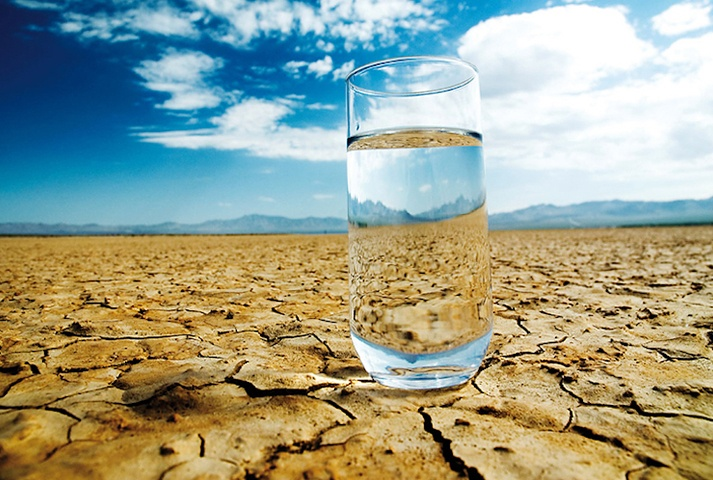 why you need to stay hydrated in the heat